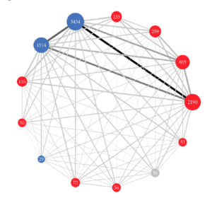 Mapping online political talks through network analysis: a case study of the website of Italy's Five Star Movement